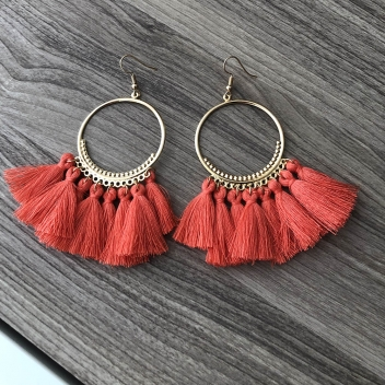 Hoop earrings with salmon...